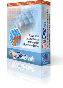 FlyGrid.Net Box